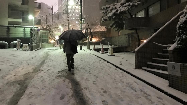 弊社事務所前。2018年1月22日18:18。すっかり雪景色です
