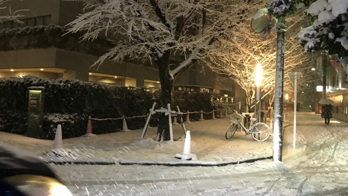 渋谷区総合文化センター大和田もすっかり雪景色