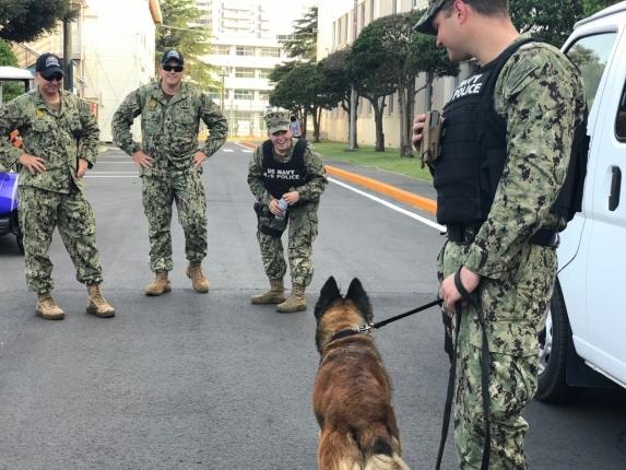 軍用犬と女性隊員