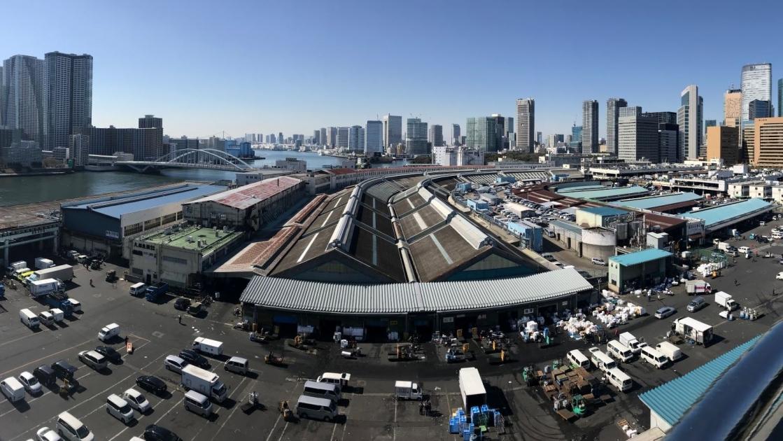 場内の建物屋上から見た築地市場