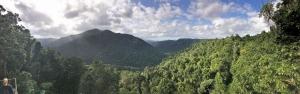 ウールヌーラン国立公園内 マムー・スカイウォークからの眺め